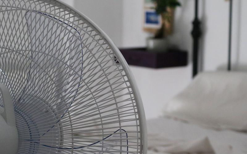 Aspas del ventilador de pie
